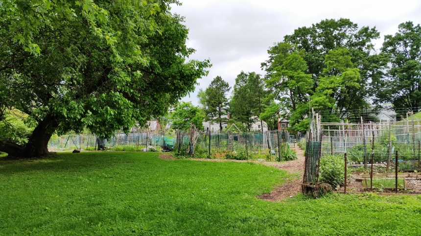 Friendship Community Garden