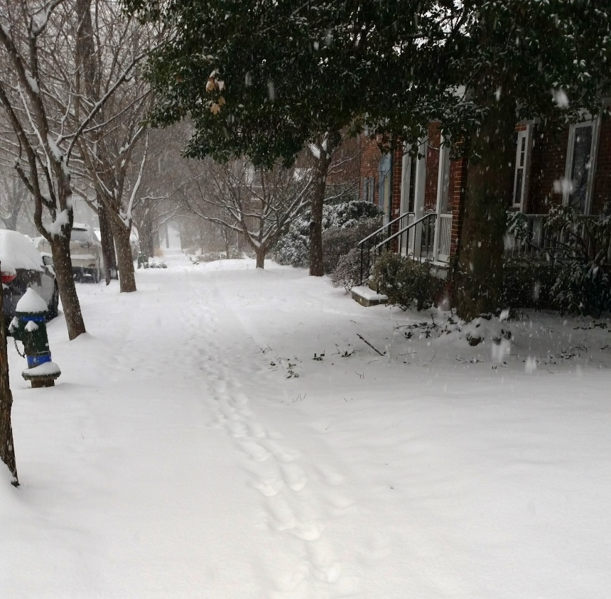 C'mon people - let's get to shoveling!