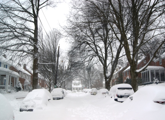Snow covered Tenleytown street